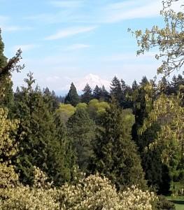 Springtime in Portland, Oregon