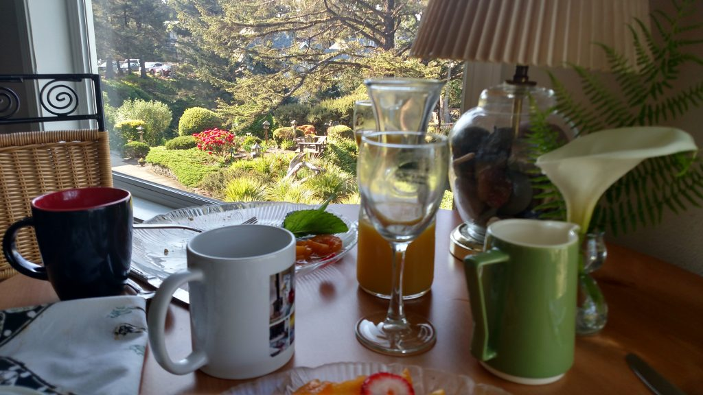Breakfast Aftermath (with a view) - Tyee Lodge
