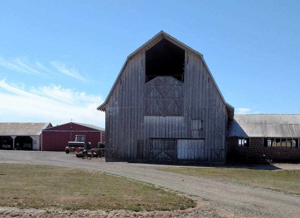 An Olde Barn along the CBBT (2)